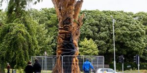 The Tree of Life at Saint Anne's Park